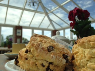 Tea, Coffee and Cakes at the Bear Cafe Isle of Wight